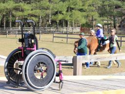Free Rein Center For Therapeutic Riding and Education